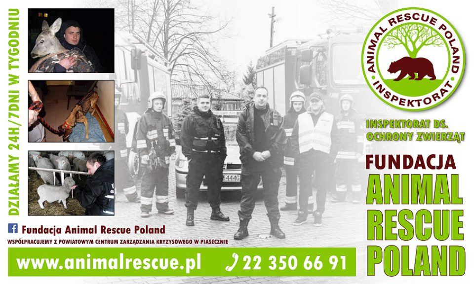 Fundacja Animal Rescue Poland